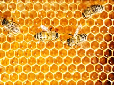 Hive CLI 작업을 Crontab에 설정하는 경우 삽질